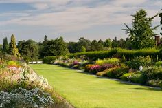 Wisley's Mixed Borders; providing one of the most famous views of RHS Garden Wisley and running a massive 128 metres (420ft), these borders are one of Britain's finest examples of mixed borders.