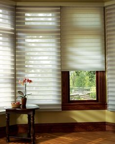 Silhouette® Quartette® window shadings with EasyRise™ cord loop