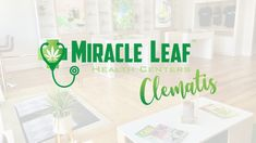 #MiracleLeaf is your 1st stop in Florida when obtaining your #MedicalMarijuanaCard. Visit a state approved #medicalmarijuana doctor at #MiracleLeaf in downtown #WestPalmBeach, FL.   #MarijuanaCard #LegalWeed #MiracleLeafWestPalmBeach #MiracleLeafClematis Health Center, West Palm Beach, Medical Marijuana, Clematis, Doctors, Florida, Cards, The Florida, Maps