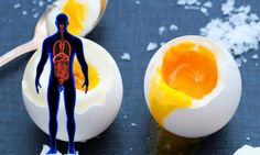 SEVERAL YEARS AGO THE HEALTH ORGANIZATIONS FROM ALL OVER THE WORLD WARNED THE POPULATION ABOUT THE CHOLESTEROL CONTENT IN THE EGGS – JUST LIKE AVOCADOS OR COCONUT OIL, IT WAS BELIEVED THAT THE EGGS ARE ALSO DANGEROUS FOR OUR HEALTH. ONE EGG INCLUDES 180-186 MG OF CHOLESTEROL WHILE THE LIVER GENERATES 1000-2000 MG OF CHOLESTEROL […]