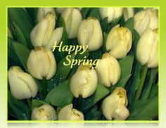 SPRING TULIPS EASTER PHOTO GREETING CARD by MYSAVIOR on Etsy, $3.50