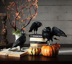 There's just something I love about crows in the fall...these little guys would be adorable on a bookshelf or mantle!