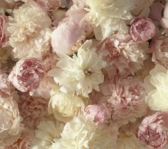 peonies are soft and delicate, I especially love the pastel pink color when arranged against the white.  This inspires me to be elegant with a up hairdo that's wind blown...