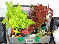 DIY Maletas recicladas   tugagreenfashion