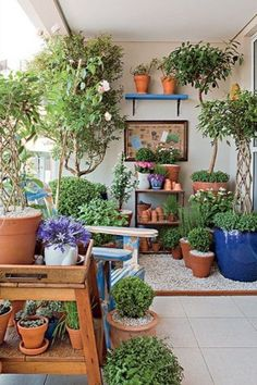 You can't not love plants. However, what you are allowed not to love is if you have to dedicate too much time to their care. It can get frustrating, I know. But if there are low-maintenance plants? Especially if you're traveling a lot, you won't be able to do anything but think what if it dies from wanting water? What if it gets too hot? This can, indeed, be an aggravating circumstance in plant care. However, there is an easy fix. If you are wondering which these might be, click on to read! Small Balcony Garden, Porch And Balcony, Balcony Plants, House Plants Decor, Terrace Garden, Indoor Garden, Indoor Plants, Outdoor Gardens, Balcony Ideas
