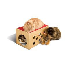 SmartCat Bootsie's Bunk Bed and Playroom Cat Bunk Beds, Wooden Bunk Beds, Pet Beds, Heated Cat Bed, Action Toys, Red Cushions, Cat Scratching Post, Favorite Pastime, Wood Construction