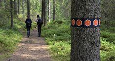 Två människor följer en vandringsled i skogen. Rift Valley, Magical Forest, Coral Reefs, Bouldering, Stockholm, Great Places, Wilderness, Wander, Paths