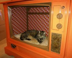 Recycled TV unit pet bed