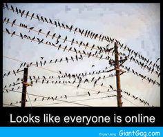 Online ...