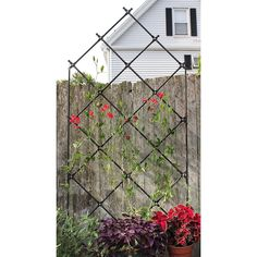 Amazon.com : Freestanding Lattice Trellis : Trellises : Patio, Lawn & Garden