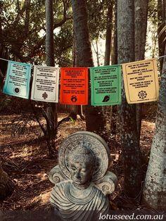 Lotus Seed Buddhist inspired prayer flags designed & printed in Australia to promote peace, compassion, spirituality & well-being. Get yours here: lotusseed.com.au Silent Prayer, God Prayer, Seed Quotes, Buddhist Prayer, Prayer Flags, Angel Art, Garden Structures, Flag Design, Feeling Loved