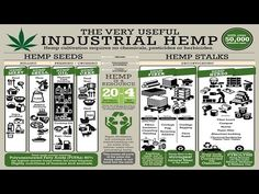 """This is the first part of my video, """"What You Have To Know About Cannabis, Hemp, Marijuana"""", and it covers the multitude of products and benefits of the indu..."""
