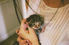 tumblr girls and cats - Google Search