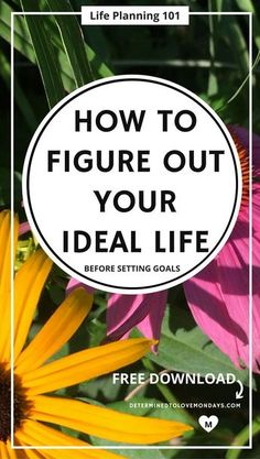 Learn why people can't describe what their ideal life looks like. Use the free exercise provided to figure it out for yourself. Simple, efficient & effective. #newyearsresolution #planninglife #lifeplanning #lifeplans #goalsetting #goals #mindset #selfawareness #personalgrowth #transformyourlife #fulfilldreams #lifechanges #planning #makingplans #reflection #prioritizing #freeprintable