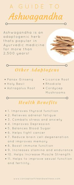 Benefits Of Ashwagandha For Thyroid, Brain Health, Fatigue and More! Benefits Of Ashwagandha For Thyroid, Brain Health, Fatigue and More! – Concepts of Life & Wellness Ayurveda, Herbal Remedies, Health Remedies, Natural Remedies, Thyroid Health, Brain Health, Thyroid Diet, Lemon Benefits, Health Benefits