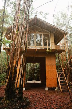| Tiny House on the Big Island | Kristie's 2nd tiny house build, this one in Hawaii. ~ click on photo for more ~