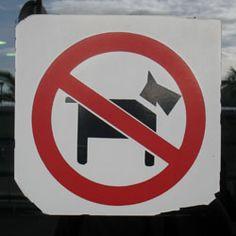 Australia: No schnauzers.