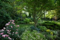 """We visited Sally Barker's beautiful garden in Baltimore back in April (refresh your memory HERE), and the comments ranged from """"...my vision of a perfect garden!  Beautiful!!!!!"""" to """"...an oasis of..."""