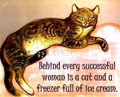 Tabby Cat Quote Behind Every Successful Woman by DollarDownloads Crazy Cat Lady, Crazy Cats, Cat Races, Art Nouveau, Owning A Cat, Funny Pictures With Captions, Cat People, Cat Quotes, Cat Colors