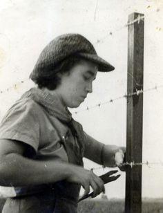 הקמת הגדר ביום העליה על הקרקע 1938