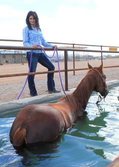 Babyflo is going for a swim! Barrel Racing Quotes, Barrel Racing Horses, Barrel Horse, Horse Barns, Horse Tack, Horse Stalls, Horse Saddles, Western Saddles, Inspirational Horse Quotes