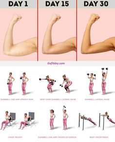 Easy Arm Workout, Back Fat Workout, Gym Workout For Beginners, Gym Workout Tips, Fitness Workout For Women, Workout Challenge, Easy Workouts, Workout Videos, Tone Arms Workout