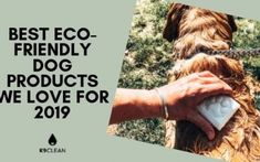 Clean has the best in environmentally friendly dog products. Check out our paper biogdegradable poop bags, mobile dog shower, and natural dog shampoos. Natural Dog Shampoo, Dog Shower, Dog Paws, Dog Grooming, Dog Friends, Biodegradable Products, Swag, Dogs, Doggies