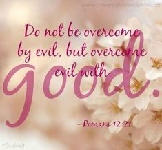 Verse of the Day: Romans Do not be overcome by evil, but overcome evil with good. It's easy to see that the devil is busy stirring up evil all over the world. Overcome Evil With Good, Healing Verses, Evil Person, Evil World, Quick Quotes, Prayer Scriptures, Favorite Bible Verses, Praise God