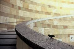 Staatsgalerie by Popikone, via Flickr Germany, Photography, Watch, Shopping, Stuttgart, Stairway, City, Photograph, Clock