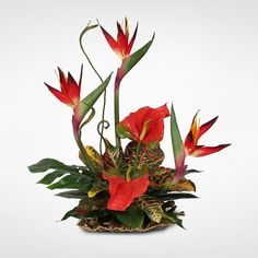 Silk Bird of Paradise and Anthurium Tropical Arrangement on Gold Leaf Plate (Bird of Paradise/Anthurium on Gold Leaf Plate) Exotic Flowers, Faux Flowers, Tropical Flowers, Silk Flowers, Paper Flowers, Exotic Birds, Fresh Flowers, Tropical Flower Arrangements, Artificial Floral Arrangements