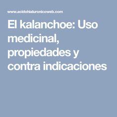 El kalanchoe: Uso medicinal, propiedades y contra indicaciones