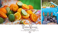 Trisha Varney, photography, set designer, styled shoot, props, rustic fields, #KristiManganPhotography, #props, #sodapop