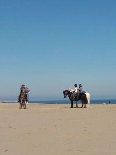 Cavalli in spiaggia