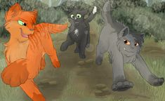 Fireheart, Graystripe, and Ravenpaw as apprentices. Firepaw, Graypaw, and Ravenpaw racing :D
