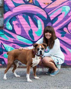 Fotograf Zrobi Zdjcia Ponad 200 Rodzinom Ktre Uratoway Psy Dziki Adopcji  Interesujace
