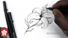 Alphonso Dunn of 'How 2 Draw Everything' on YouTube gives a great tutorial on drawing a lily using Sakura's new line of Pigma Professional Brush Pens.