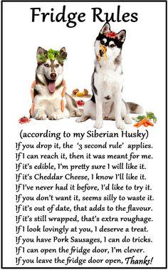 Husky Dog Rules Funny Dog Fridge Magnet Pet Animal Lover Novelty Gift