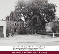 Back of Salvation Army from George Street, between College and High Streets, Oak Street redevelopment area, New Haven. :: Connecticut History Online