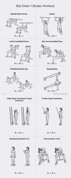 weight lifting workout routines for women visit this site