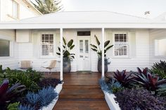 An old cottage in Sydney has been given new life with a contemporary garden of lush, layered plants. Old Cottage, Garden Cottage, Home And Garden, Garden Homes, Exterior Colors, Exterior Design, Outdoor Spaces, Outdoor Living, Lush