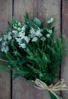 Uusi Kuu Cactus, Spring Treats, Keep It Simple, Travel Style, Flower Art, Bouquets, Art Photography, Brunch, Bloom