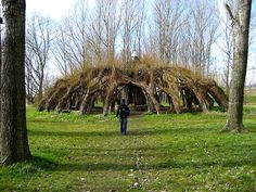 Love this!!  Natural Structure - made of living willow that is rooted in the ground, then bundled.  Willow switches can be just stabbed into the ground and they will grow, if the soil is moist.