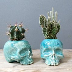 A cactus is a superb means to bring in a all-natural element to your house and workplace. The flowers of several succulents and cactus are clearly, their crowning glory. Cactus can be cute decor ideas for your room. Skull Planter, Josie Loves, Room Deco, Plants Are Friends, Skull Decor, Deco Floral, Cactus Y Suculentas, Skull And Bones, Cacti And Succulents