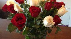 Rosen bleiben mit Zucker länger frisch