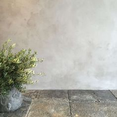 Expert Advice: 7 Ways to Use Lime Plaster (Hint: It's Not Just for Walls) - Remodelista Diy Plaster, Plaster Paint, Decorative Plaster, How To Plaster Walls, Plaster Texture, Concrete Wall Texture, Stucco Walls, Stucco Interior Walls, Wood Walls