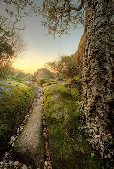 Sintra - Tesoro en la bruma - via Diario de Leon 13.02.2015   Sintra, la pequeña vila al noroeste de Lisboa Patrimonio de la Humanidad, se ha convertido en un destino turístico único. El musgo y el rocío lo impregnan todo. Si el viajero alza la vista al cielo descubrirá el impresionante Palacio de Pena, pintado de amarillo y rosa, rodeado de un enigmático bosque.