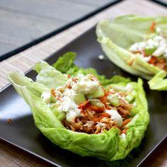 Slow Cooker Buffalo Chicken Lettuce Wraps | http://www.thesweetslife.com/2014/03/slow-cooker-buffalo-chicken-lettuce.html