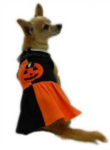 New - #Halloween Patchwork Dog Dress