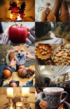 """antehia: """"mabon · september 21 happy mabon for all the witches in the northern hemisphere! Mabon, Samhain, Autumn Aesthetic, Autumn Cozy, Hygge, Hello Autumn, Color Of Life, Fall Harvest, Autumn Inspiration"""