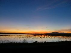 Delta del Ebro Delta Del Ebro, Celestial, Sunset, Outdoor, Places, Life, Outdoors, Sunsets, Outdoor Games